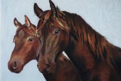 17 - INSPIRATION - paard met veulen