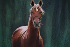 18 - Paard in het groen -